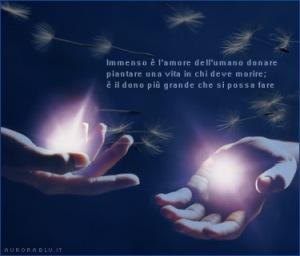 vita_dono_amore